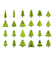 Christmas trees in a flat style Firs isolation vector image vector image