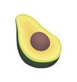 half of ripe avocado with bone healthy and tasty vector image