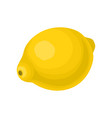 bright yellow lemon sweet and healthy food fresh vector image