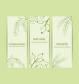 collection herbal banner vector image vector image