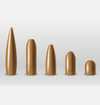 set different type bullets isolated vector image
