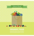 Banner with fresh berries and fruits Concept vector image vector image