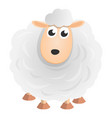 big wool sheep icon cartoon style vector image