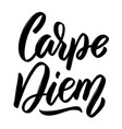 carpe diem hand drawn lettering isolated on white vector image
