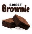 chocolate brownies vector image vector image