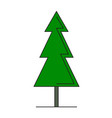green spruce on white background vector image vector image