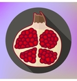 pomegranate icon flat design vector image