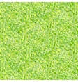 Simple elegant linear pattern in grass green vector image vector image
