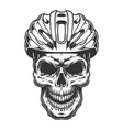 skull in the bicycle helmet vector image