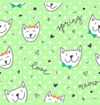 spring cats pattern vector image
