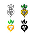 sugar beet logo white and yellow beetroot vector image