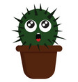 suprised cactus in brown pot on white background vector image
