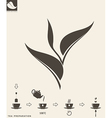 Tea preparation Leaf vector image