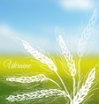 Ukrainian field background vector image