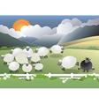 black sheep in field vector image vector image