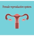 human organ icon in flat style female reproductive vector image vector image