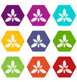 leaf icons set 9 vector image