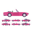 pink lady cabriolet cat set vector image