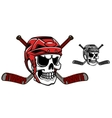 Skull in ice hockey helmet vector image vector image