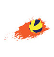 volleyball ball icon with an effect vector image vector image