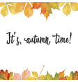a frame of different autumn leaves ready template vector image