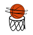basketball ball on a net vector image vector image