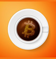 bitcoin symbol icon vector image