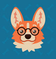 corgi dog emotional head with glasses vector image vector image