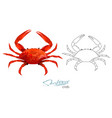 crab in cartoon style isolated vector image vector image