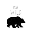 Hand drawn wild forest bear vector image vector image