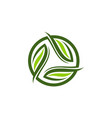leaf ecology logo design template vector image