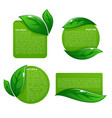 nature tag templates collection of leaf labels vector image vector image
