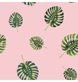 Palm Tropical leaves seamless pattern vector image vector image