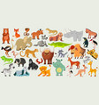 set funny animals birds and reptiles vector image vector image