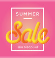 summer sale with fluid background vector image vector image