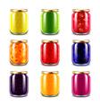 Jam jars icons set vector image