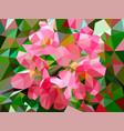 apple blossom vector image