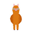 cute south american alpaca in front vector image