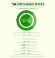 entourage effect proportion vertical vector image vector image