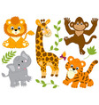 Safari Animals vector image vector image