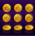 set gold coins mayan or aztec tribal animals vector image