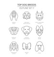 top dog breeds pet outline collection vector image vector image