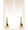 Two Beautiful Guitar on Brown Stage Background vector image