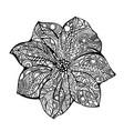flower black white hand drawn vector image