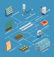 greenhouse installations production isometric vector image vector image
