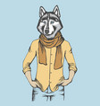 husky in human shirt vector image vector image