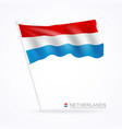 netherlands waving flags banner vector image