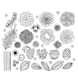 set hand drawn flowers and leaves vector image