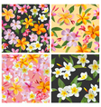 set tropical flowers background vector image vector image