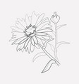aster icon line element of vector image vector image